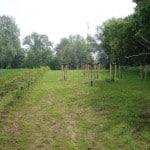 De boomgaard in het speel en oogstbos