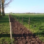 aanplant struweelhagen